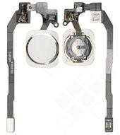 Home Button + Flex für iPhone 5S, SE - silver, white