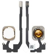 Home Button Assembly für iPhone 5S, SE - gold